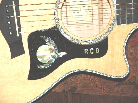 Taylor Guitar Custom Taylor Flying Eagle Pick Guard