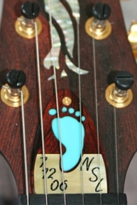 Paul Reed Smith ( PRS ) Custom Truss Rod Cover