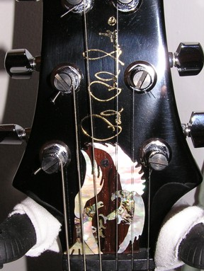 Paul Reed Smith ( PRS ) Custom Eagle Truss Rod Cover